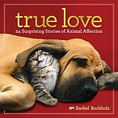 Book About Animals in Love