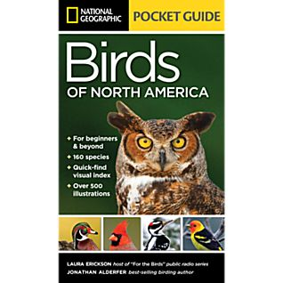 photo: National Geographic Pocket Guide to the Birds of North America