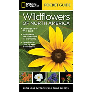 View National Geographic Pocket Guide to Wildflowers of North America image