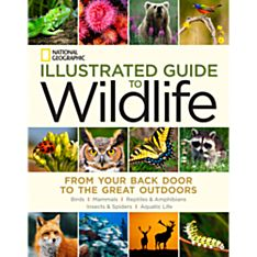 Illustrated Guide To Wildlife, 2014