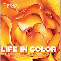 Life in Color - Mini Edition