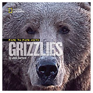 Face to Face with Grizzly Bears