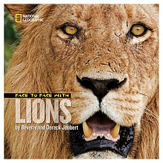 View Face to Face with Lions - Hardcover image