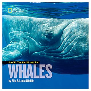 View Face to Face with Whales - Hardcover image