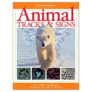 photo: National Geographic Animal Tracks and Signs