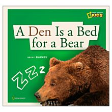 A Den is a Bed for a Bear