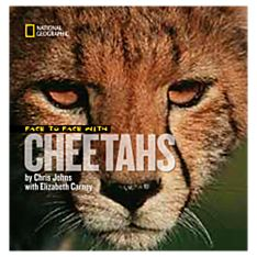 Face to Face with Cheetahs - 9781426303234