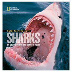 Books About Sharks for Kids