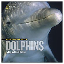 Face to Face with Dolphins - Softcover