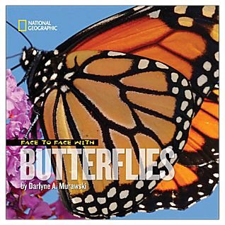 View Face to Face with Butterflies image
