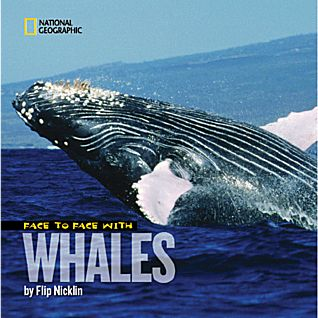 View Face to Face with Whales - Softcover image