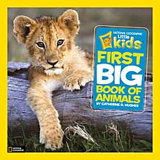Big Book of Animals for Kids
