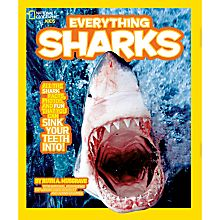 Everything Sharks, 2011