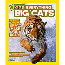 Big Cats Book for Kids