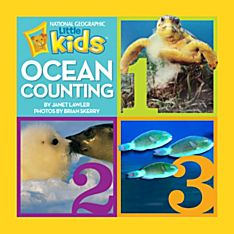 Books About Ocean Animals for Kids