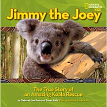 Jimmy the Joey, 2013