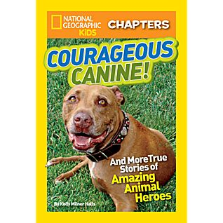View National Geographic Kids Chapters: Courageous Canine image