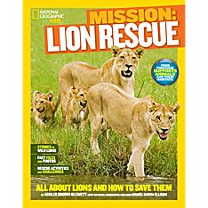 Lions Book for Kids