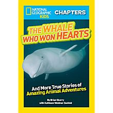 Kids Book on Whales