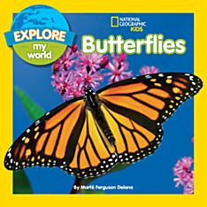 Explore My World: Butterflies