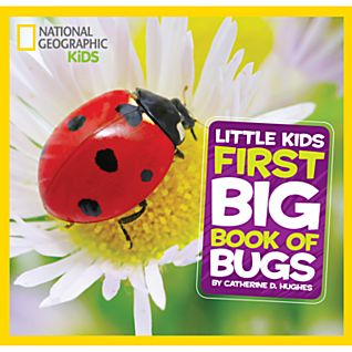View National Geographic Little Kids First Big Book of Bugs image