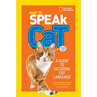 View How to Speak Cat image