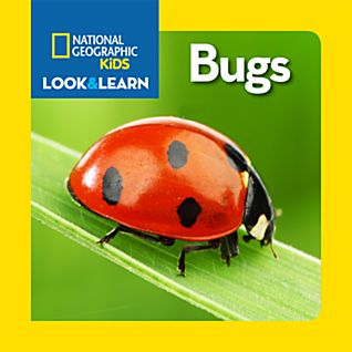 View National Geographic Little Kids Look and Learn: Bugs image