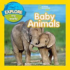 Animals and Nature Books for Kids