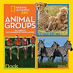 Animals and Nature Books for Little Kids