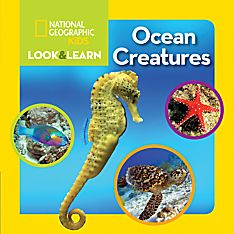 Books on Ocean Creatures