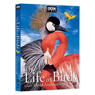 The Life of Birds 3-DVD Set