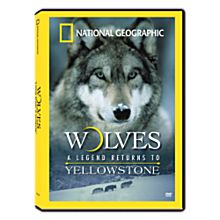 Wolves: A Legend Returns to Yellowstone DVD, 2007