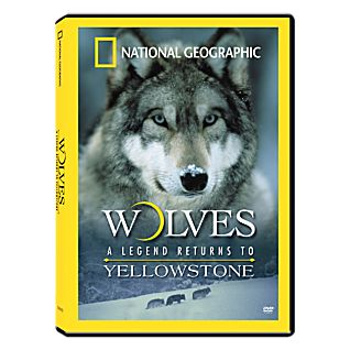 View Wolves: A Legend Returns to Yellowstone DVD image
