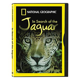 In Search of the Jaguar DVD