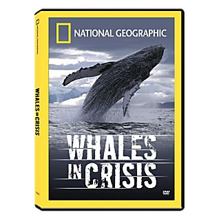 View Whales in Crisis DVD image