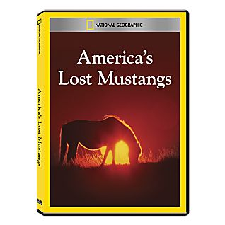 View America's Lost Mustangs DVD Exclusive image