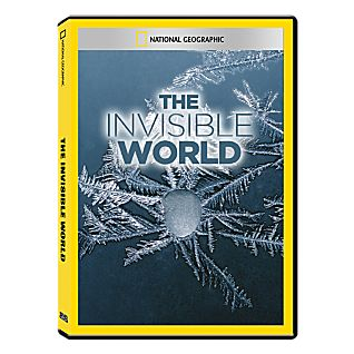 View The Invisible World DVD Exclusive image