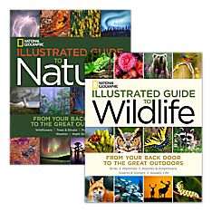 National Geographic Illustrated Guide to Wildlife and National Geographic Illustrated Guide to Nature Set