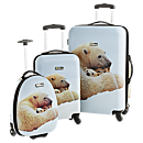 National Geographic Explorer Polar Bear Hard-side Luggage