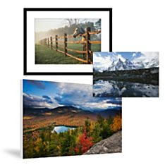 Nature Prints & Posters on National Geographic Art Store