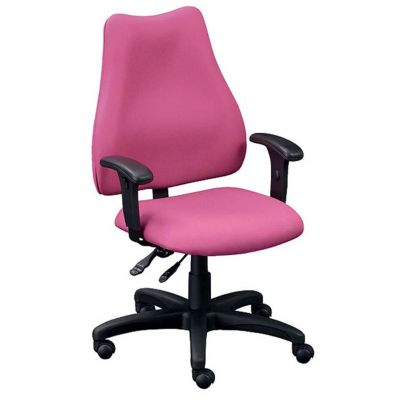 High Back Ergonomic Computer Chair: This Pretty In Pink Office Option Will  Keep You Comfy Throughout Your Work Day. Adjustable Seat Height, Back  Height, ...