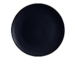 Aster Matte Black Dinner 10.75 in.