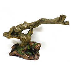 All Living Things® Natural Form Reptile Ornament