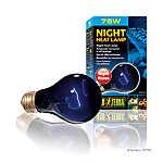 Exo Terra® Night Glo Neodymium Moonlight Lamp