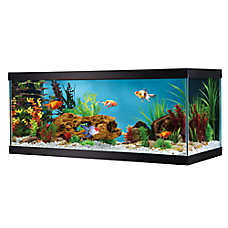 Grreat Choice® 20 Gallon Glass Aquarium