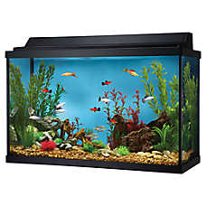 Top Fin® 29 Gallon Hooded Aquarium