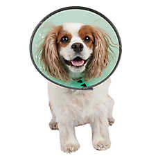 Pet Botanics Dog E-Collar