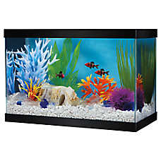 Grreat Choice® 2.5 Gallon Glass Aquarium & Canopy