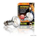 Exo Terra® Intense Basking Spot Light