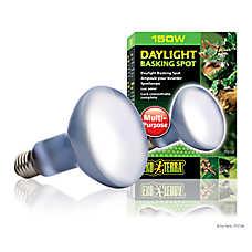 Exo Terra® Sun Glo Neodymium Basking Spot Lamp